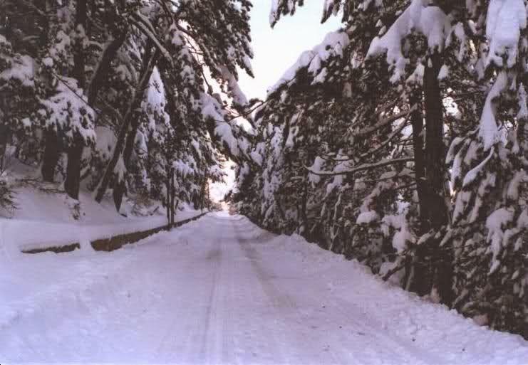 Yozgat Çamlık Milli Parkı Kış