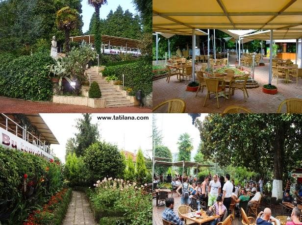 Rize Ziraat Çay Bahçesi