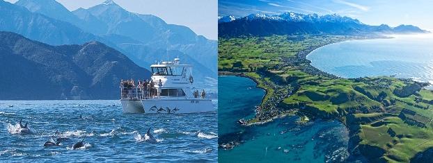 Kaikoura Yeni Zelanda