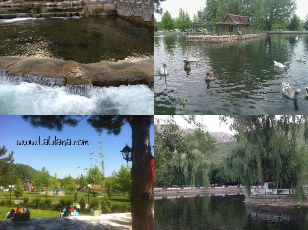 Seydişehir Kuğulu Park