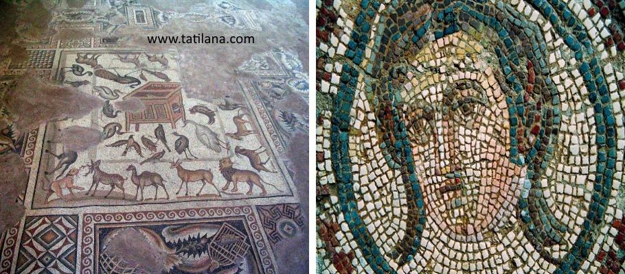 Adana Misis Mozaik Muzesi 1