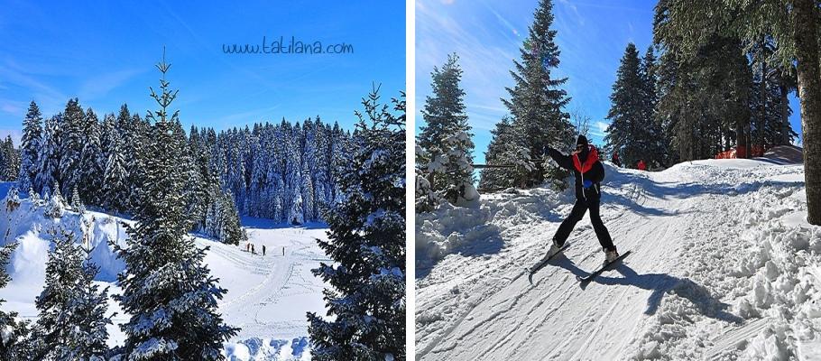 Esentepe Arkut Dağı Kayak Merkezi