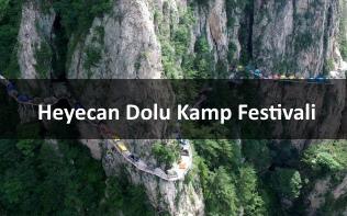 Cin Dag Kamp Festivali