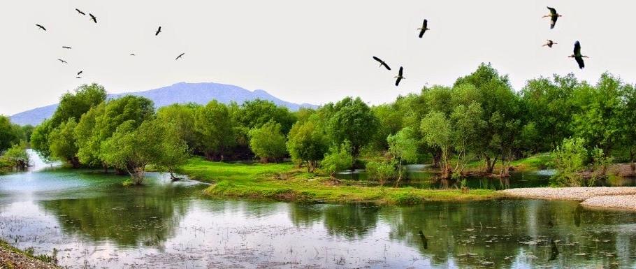 Osmaniye Kirmitli Kus Cenneti