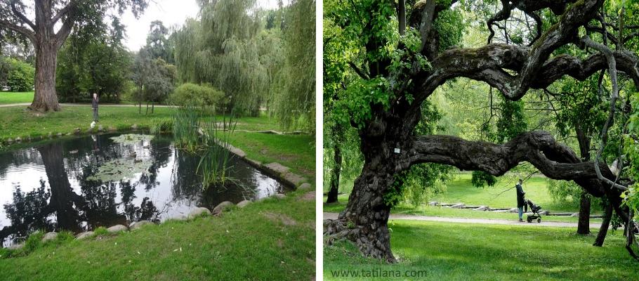 Oslo Botanik Bahcesi