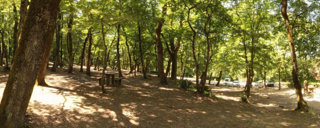 Falih Rifki Atay Tabiat Parki 1