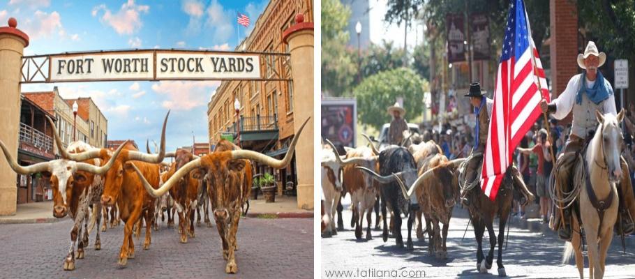 Fort Worth Stockyard Dallas