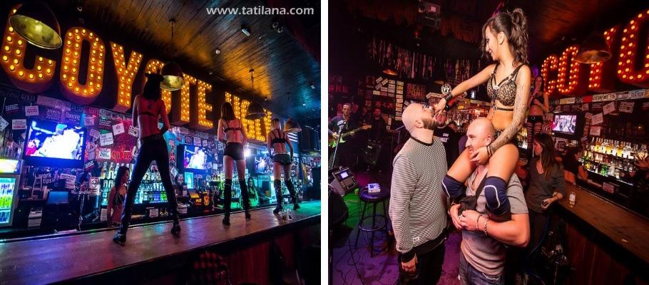 Coyote Ugly Bar Kiev