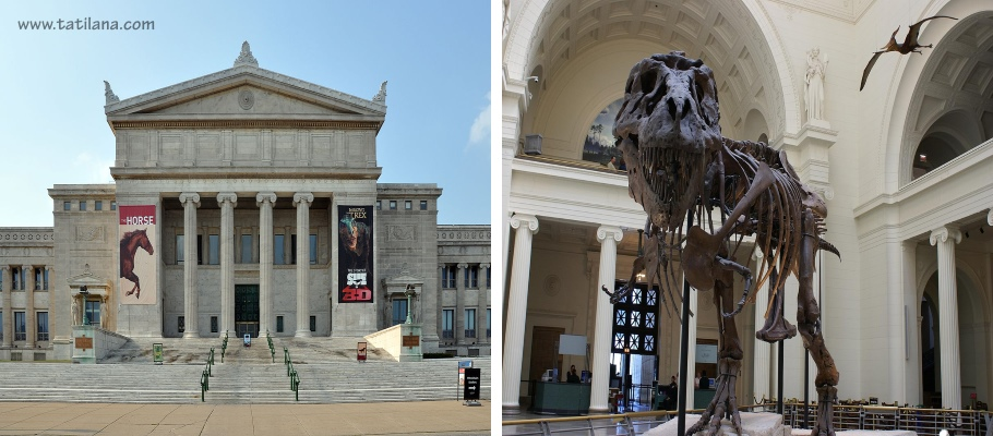 Field Museum of Natural History Chicago