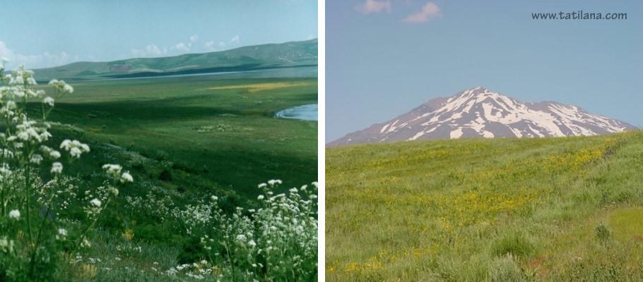 Bitlis Adilcevaz Sutey Yaylasi