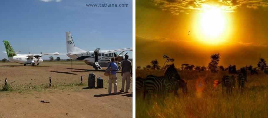 Tanzanya Safari 4
