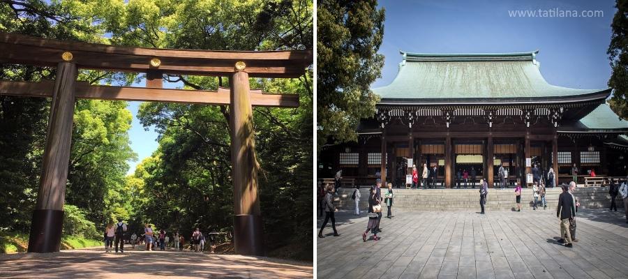 Meiji Tapinagi Japonya 1