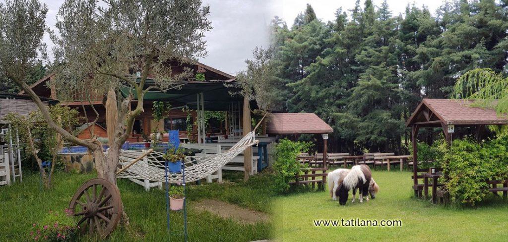 silivri masal koy